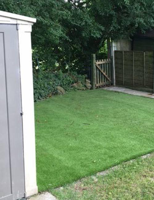 Golf Fringe / Lawn Grass